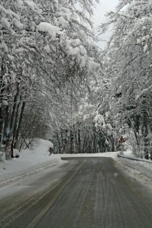 If you know that you'll be driving on snowy roads this winter season, here are some essential winter driving safety tips that you and your family should know.