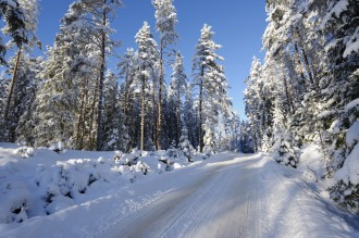 These winter driving safety tips can protect you and your family if you end up taking a longer road trip this winter season.